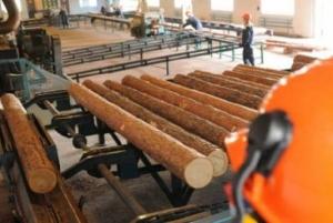 В Бондарском районе открылось новое деревообрабатывающее предприятие