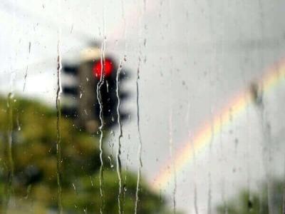Синоптики прогнозируют в Тамбове дожди с грозами