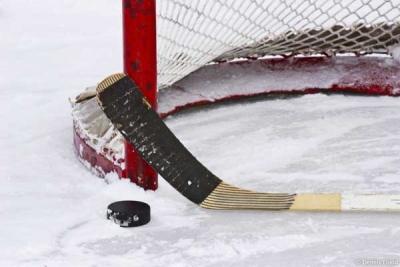 Российская студенческая хоккейная лига состоится в Тамбове