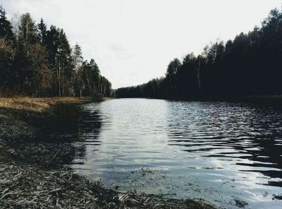 В Тамбовской области за три дня утонули 9 человек