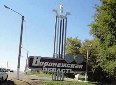 Разыскивается лысая лиса, наводящая страх на жителей Воронежской области