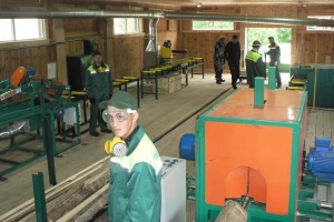 В Тамбовской области открыли четвертый цех по переработке древесины