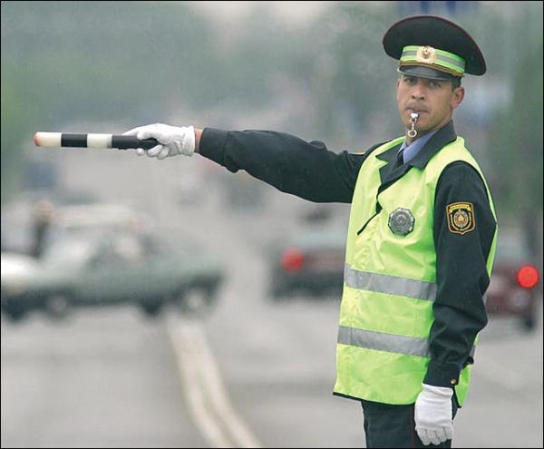 В Тамбове прошел День безопасности дорожного движения