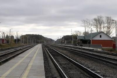 В Никифоровском районе под поезд попала 82-летняя женщина