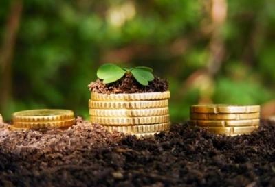 Сельское хозяйство стало приносить больше прибыли