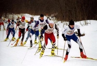 Спортсмены со всей Тамбовской области приняли участие в лыжных соревнованиях