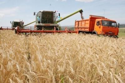 В Тамбовской области собрали более 2 миллионов тонн зерна