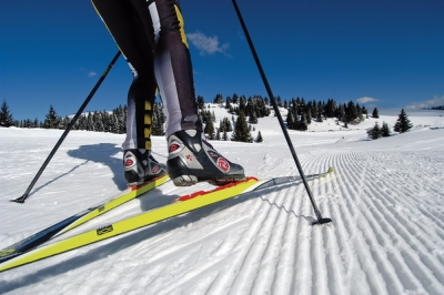"""В парке """"Дружба"""" работает прокат лыж"""