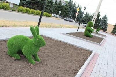 Центральную площадь Жердевки украсили зеленые животные