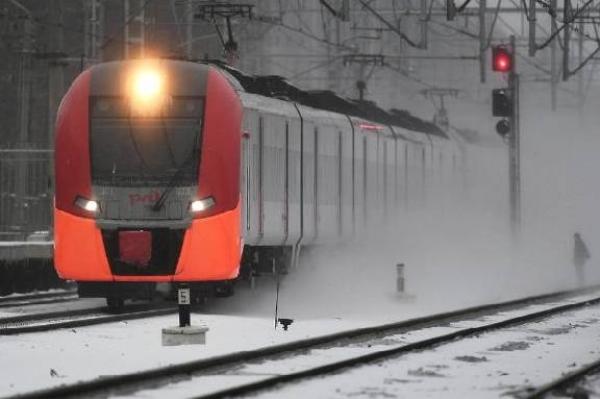 Скорый поезд, направлявшийся в Тамбов, насмерть сбил двух человек