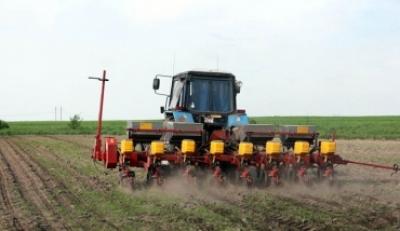 В Тамбовской области расширили площадь посевов сахарной свеклы